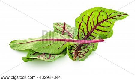 Fresh Salad Leaves Mix Isolated On White Background.  Mixed Salad With Chard Leaves