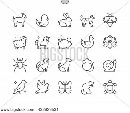 Rural Animals And Pets. Goat, Duck, Rabbit, Cow, Sheep, Pig, Chicken, Cat, Dog, Mouse, Snail, Bird,