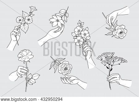 Female Hands Touching And Holding Different Flowers. Set Of Woman Hands And Blooming Flowers In Blac