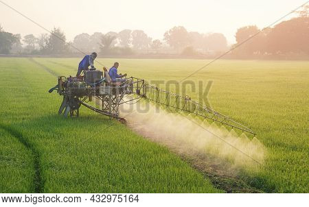 Two Asian Farmers On Sprayer Tractor Spraying Chemical And Fertilizer In Green Paddy Field At Mornin