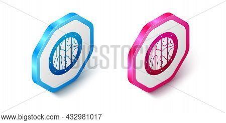 Isometric Round Wooden Shield Icon Isolated On White Background. Security, Safety, Protection, Priva