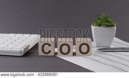 Concept Word Coo Chief Operating Officer On The Wooden Blocks On Gray Background From Green Flower A