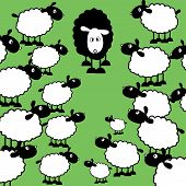 one black sheep with lots of white sheep poster