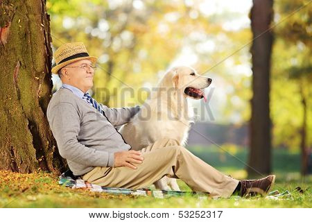 Senior gentleman and his Labrador retriever dog sitting on ground and posing in a park poster