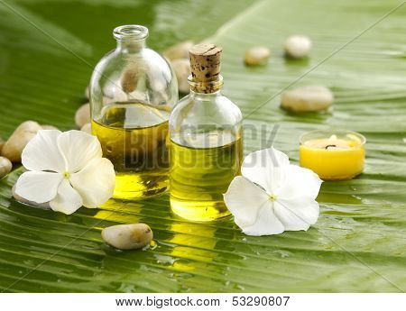 Health spa with massage oil and white flower ,candle on leaf
