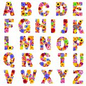 Full Floral Alphabet Isolated on White Background. Letters A to Z made of many colorful and original flowers poster