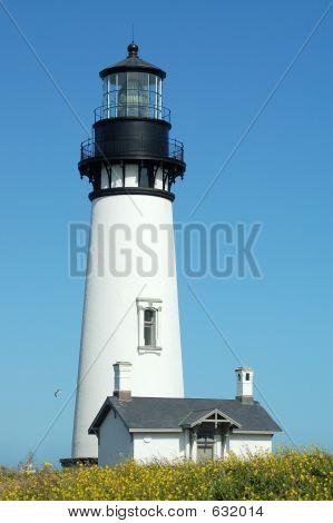 Ocean Lighthouse