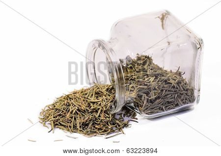 dry rosemary scattered isolated on white background