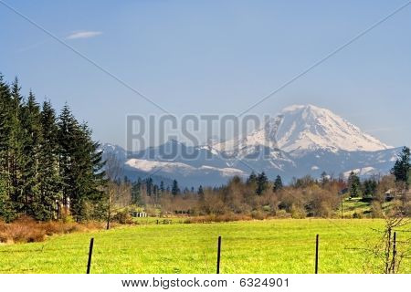 Mt. Rainier Viewed From Across A Field
