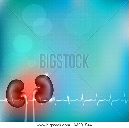 Kidneys Bright Blue Abstract Background