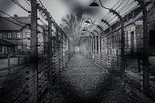 Electric fence in former Nazi concentration camp Auschwitz I, Poland poster