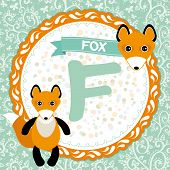 ABC animals F is fox. Childrens english alphabet. Vector illustration poster