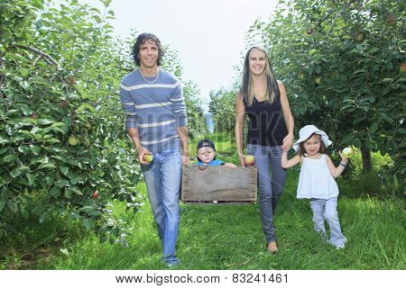 A happy family of four attractive caucasian catch apple on a field