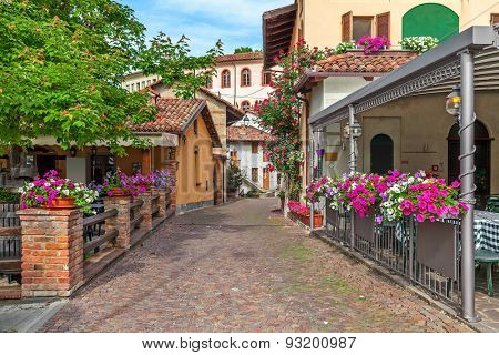 Narrow street and typical houses with flowers in town of Barolo in Piedmont, Northern Italy.