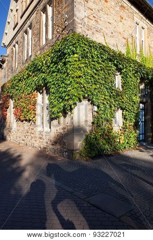 traditional corner house covered in ivy