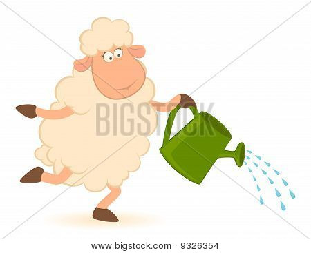 illustration of cartoon sheep pours from a watering-can poster