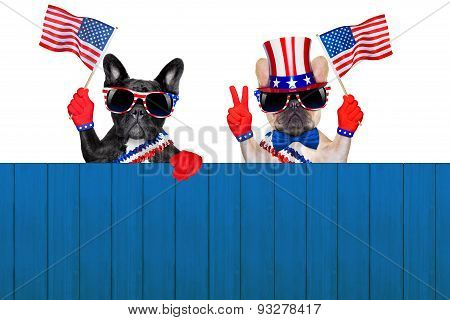 4Th Oh July Row Of Dogs