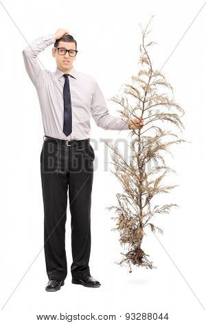 Full length portrait of a confused young guy holding a whole tree and scratching his head isolated on white background