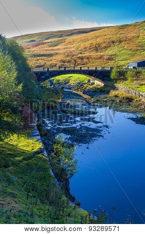 The Afon Claerwen tranquil stream on Autumn morning. Powys Wales United Kingdom. Portrait view poster