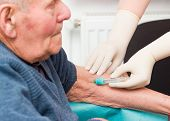 Doctor taking blood sample from elderly patient to monitor anticoagulant treatment. poster