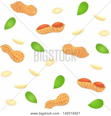 Vector seamless background peanut nut. A pattern of shelled peanuts nuts in shell and shelled, leaves.