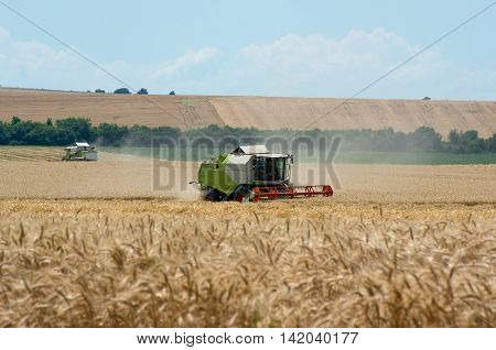 Combine harvesting wheat. Harvest. Harvesting of wheat with a combine harvester.