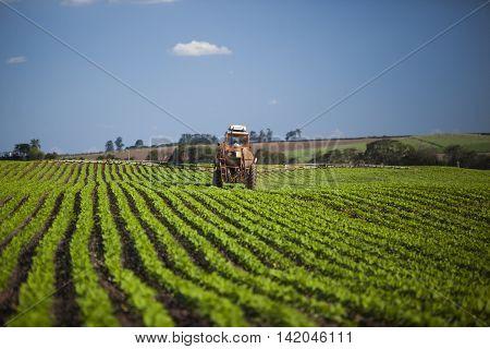 Machine Working At Peanut Field Under A Blue Sky.