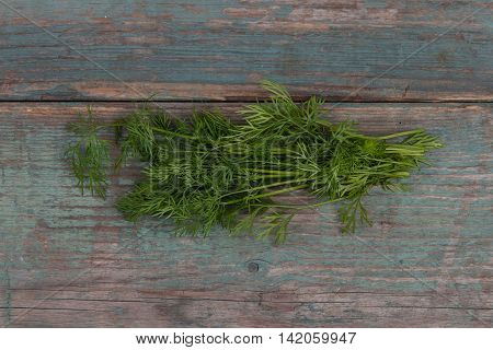 Green fresh dill on wooden table stock picture