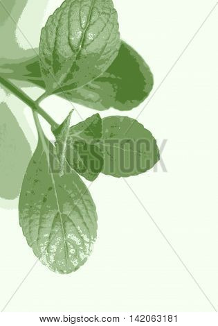 Citronella leaves closeup photo in bitmap style