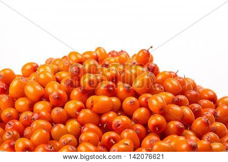 Background from sea-buckthorn berries