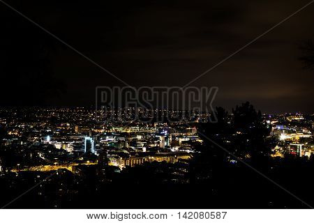 Tree Silouhette Stuttgart Landscape View Night Glowing City