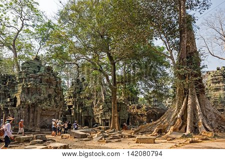 ANGKOR WAT CAMBODIA - JANUARY 29 2015: Unidentified tourists at Ta Prohm temple in Angkor Wat. Angkor Wat is the largest Hindu temple complex and religious monument in the world