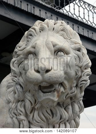 big marble lion head of old marble lion statuary