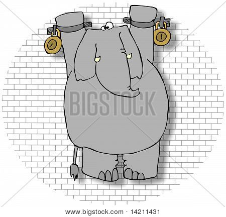 This illustration depicts an elephant hanging from shackles on a dungeon wall. poster