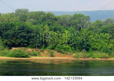 the landscape of sandy coast line from the lake with abundant vegetation on the banks in a calm windless day