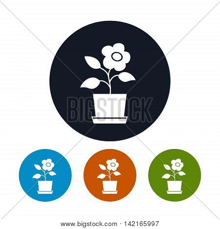 Icon Flower, Pot Four Types of Round Icons Pot with Flower ,Agricultural Industry, Vector Illustration