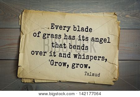 TOP 70 Talmud quote.Every blade of grass has its angel that bends over it and whispers, 'Grow, grow.