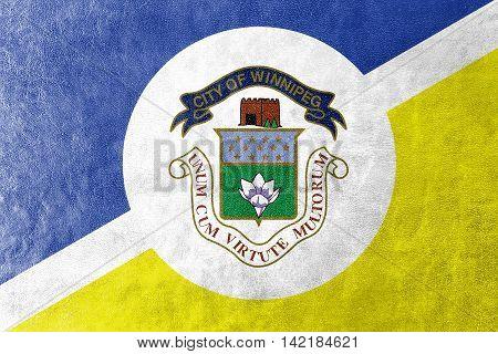 Flag Of Winnipeg, Manitoba, Canada, Painted On Leather Texture