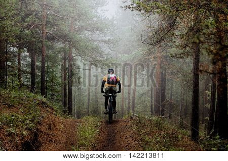man mountainbiker rides on a sports bicycle on a forest trail. in forest mist mysterious kind