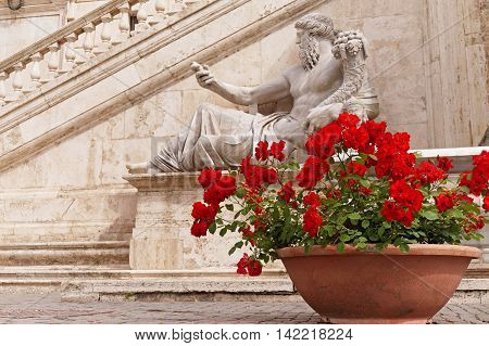 Red Roses in a Terracotta Pot in front of the Statue of Nile God at Piazza del Campidoglio in Rome