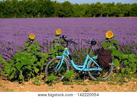 Electric bicycle in the lavender field in Provence, France