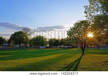 Fascinating View At Park And Washington Monument