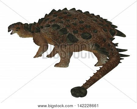 Pinacosaurus Dinosaur Tail 3D Illustration - Pinacosaurus was a herbivorous ankylosaur that lived in the Cretaceous Period of Mongolia and China.