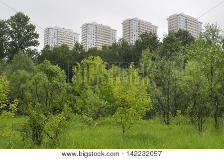 urban forest with trees and shrubs around residential complex with high-rise buildings