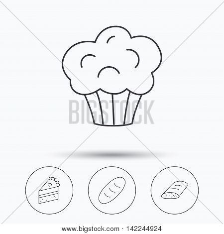 Sweet muffin, cake and bread icons. Piece of cake linear sign. Linear icons in circle buttons. Flat web symbols. Vector