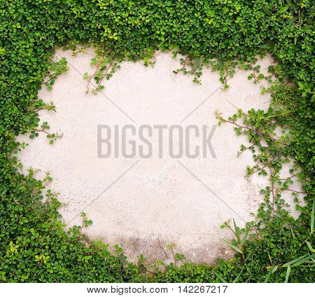 The blend between nature and buildings. Green grass with white cement floor in center area.