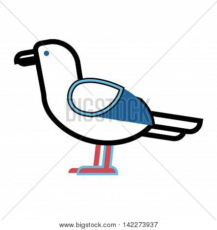 Gull flight bird and seabird gull. Natural larus gull free bird, wildlife seabird cartoon looking. Great gull larus sea wildlife animal