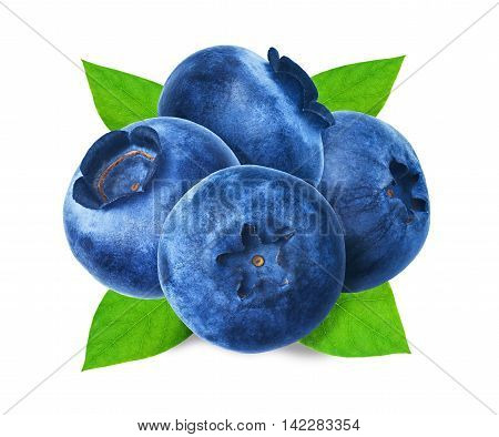 Juicy and fresh blueberries with green leaves on white background. Blue color blueberries close-up. Image of blueberries with high resolution. Hurtleberry antioxidant. Useful whortleberry for vision.
