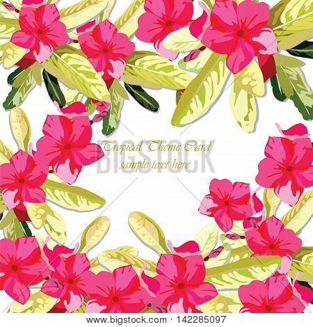 Pink Fuchsia Summer flowers background. Watercolor floral wreath. Vintage Elegant Card illustration for Women's day birthday Wedding Ceremony Anniversary