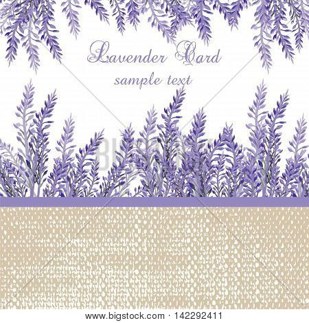 Lavender Card with provence style border. Vector Gentle blossom floral bouquet. Vintage Label with lavender beautiful fragrance